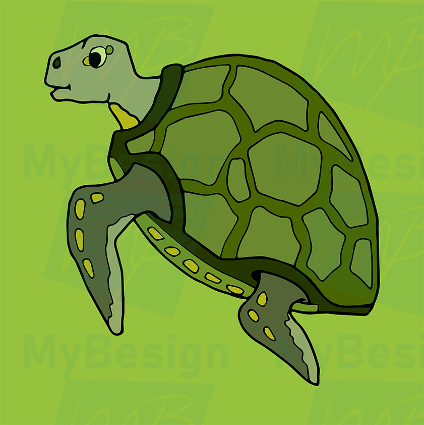 TurtleColorBackgroundClearEdges20190224